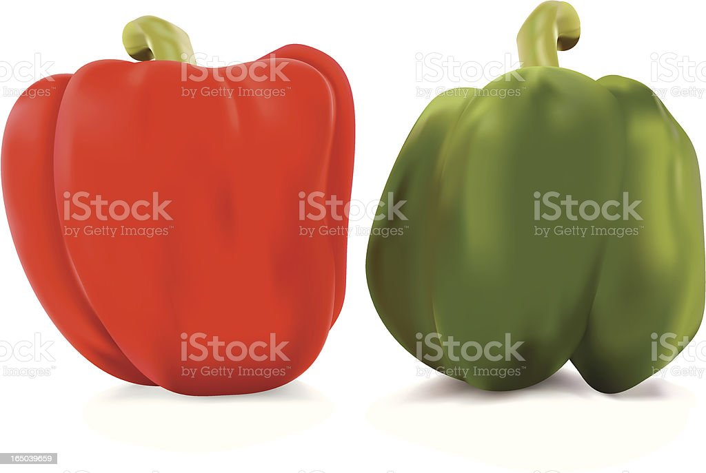 Red and green bell peppers vector art illustration