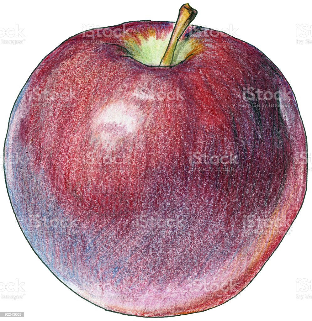 Red Apple vector art illustration