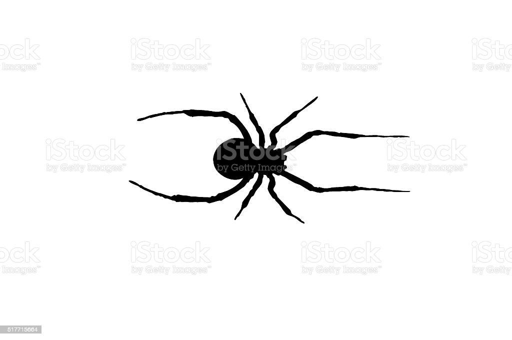 Red back black widow spider vector art illustration