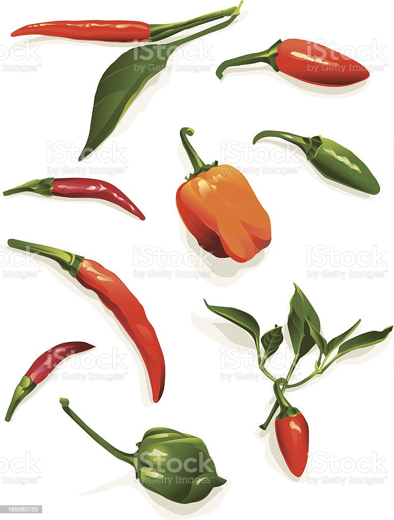 Red hot chili peppers royalty-free stock vector art