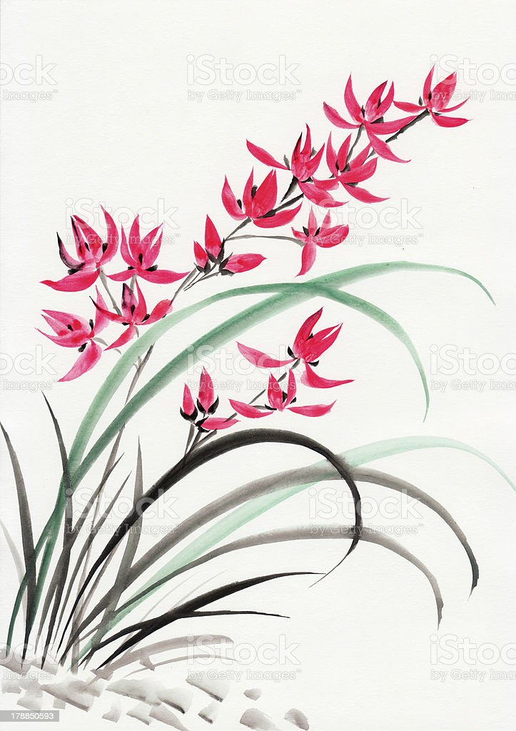 Red mountain orchids vector art illustration