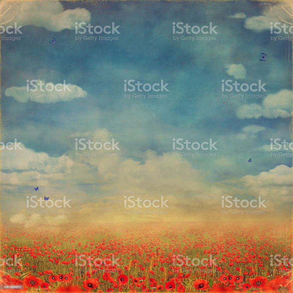 Red poppies field with blue sky vector art illustration