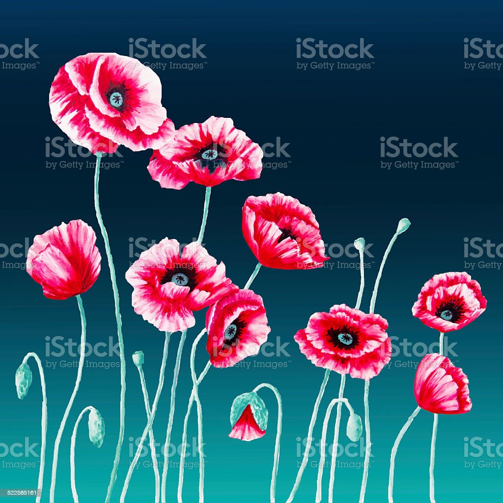 Red Poppies on an Aqua Background - Left Panel vector art illustration