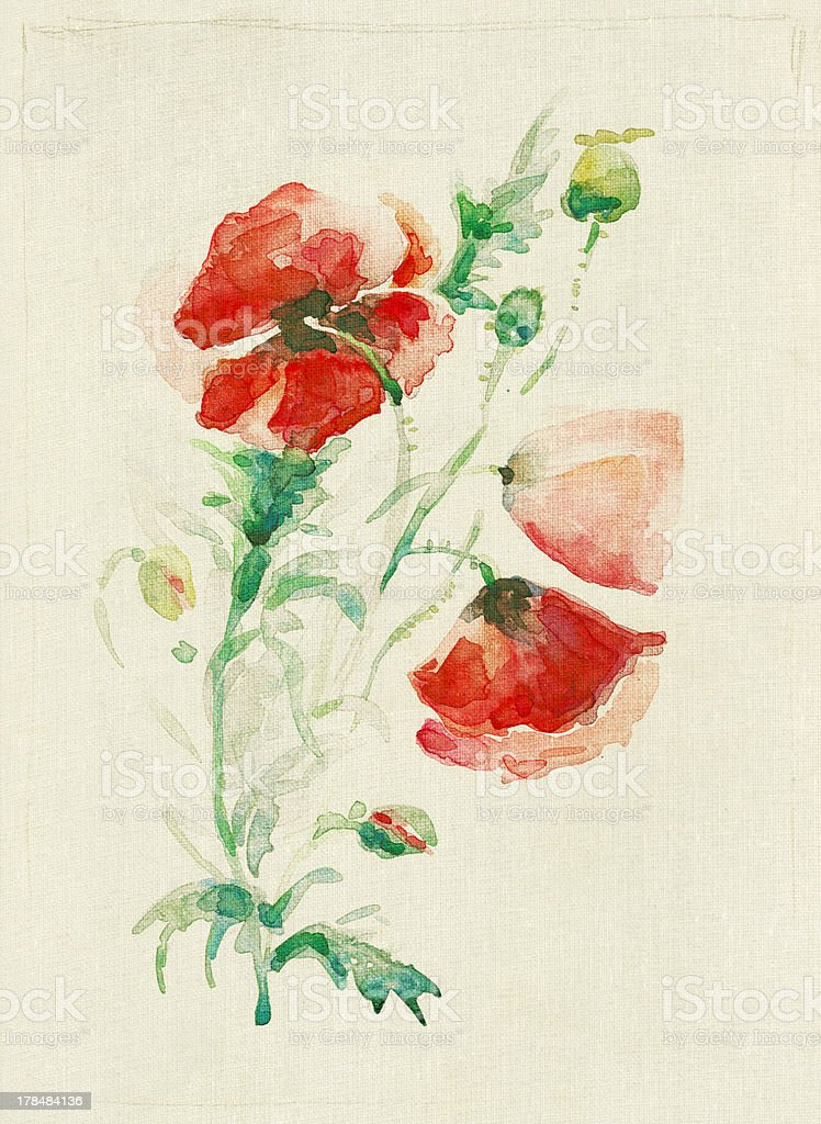 Red poppy bouquet royalty-free stock vector art