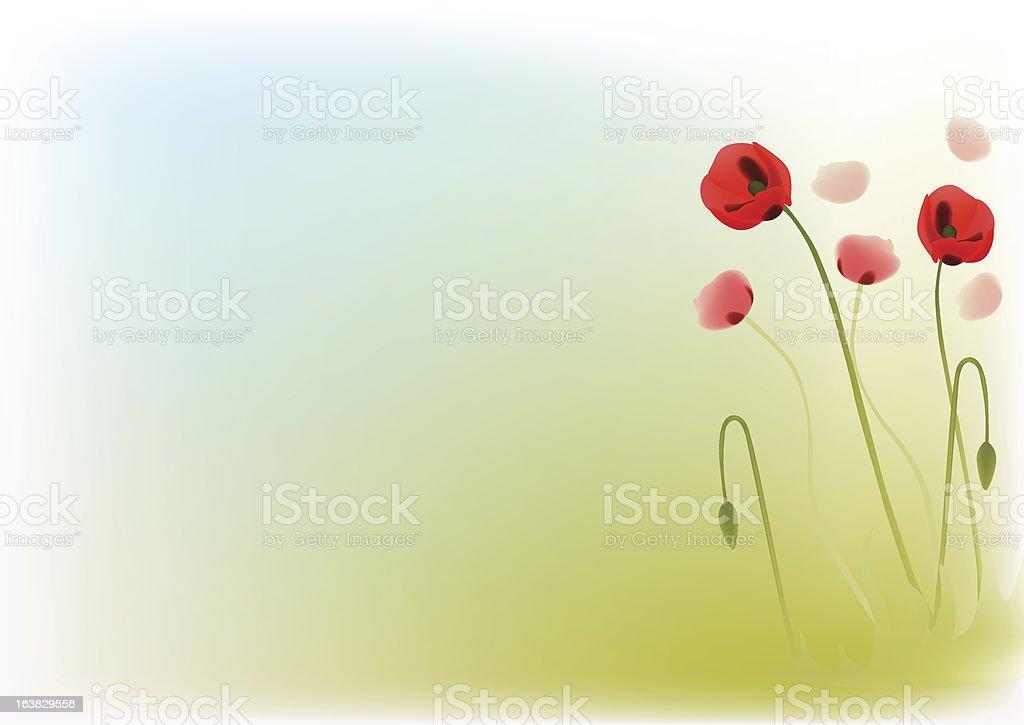 Red poppys royalty-free stock vector art