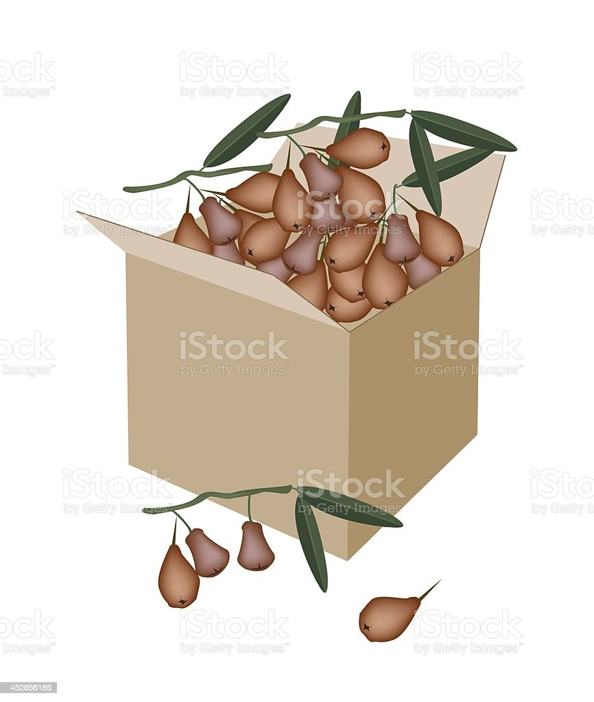 Red Water Apple in A Shipping Box royalty-free stock vector art