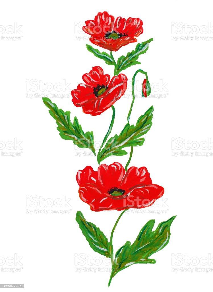 Red watercolor poppy flower stock vector art 825677336 istock red watercolor poppy flower royalty free stock vector art mightylinksfo