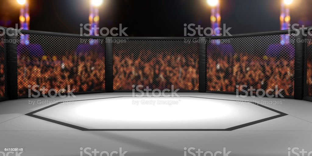 3D Rendered Illustration of an MMA, mixed martial arts, fighting cage arena. vector art illustration