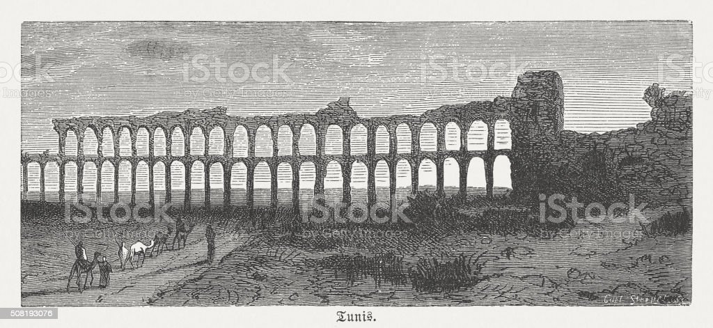 Roman aqueduct near Tunis, wood engraving, published in 1882 vector art illustration