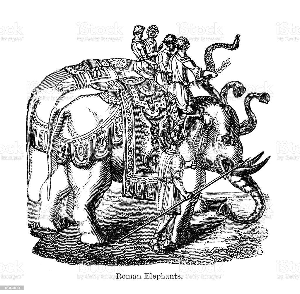 Roman Elephants royalty-free stock vector art
