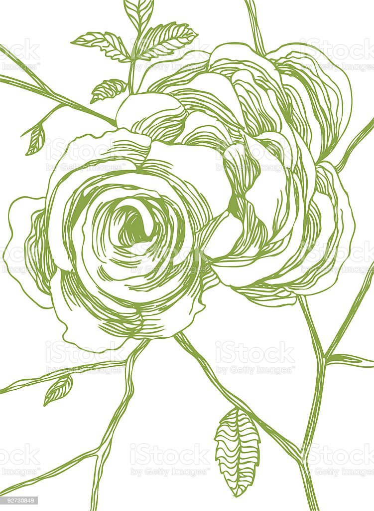 Rose Background royalty-free stock vector art