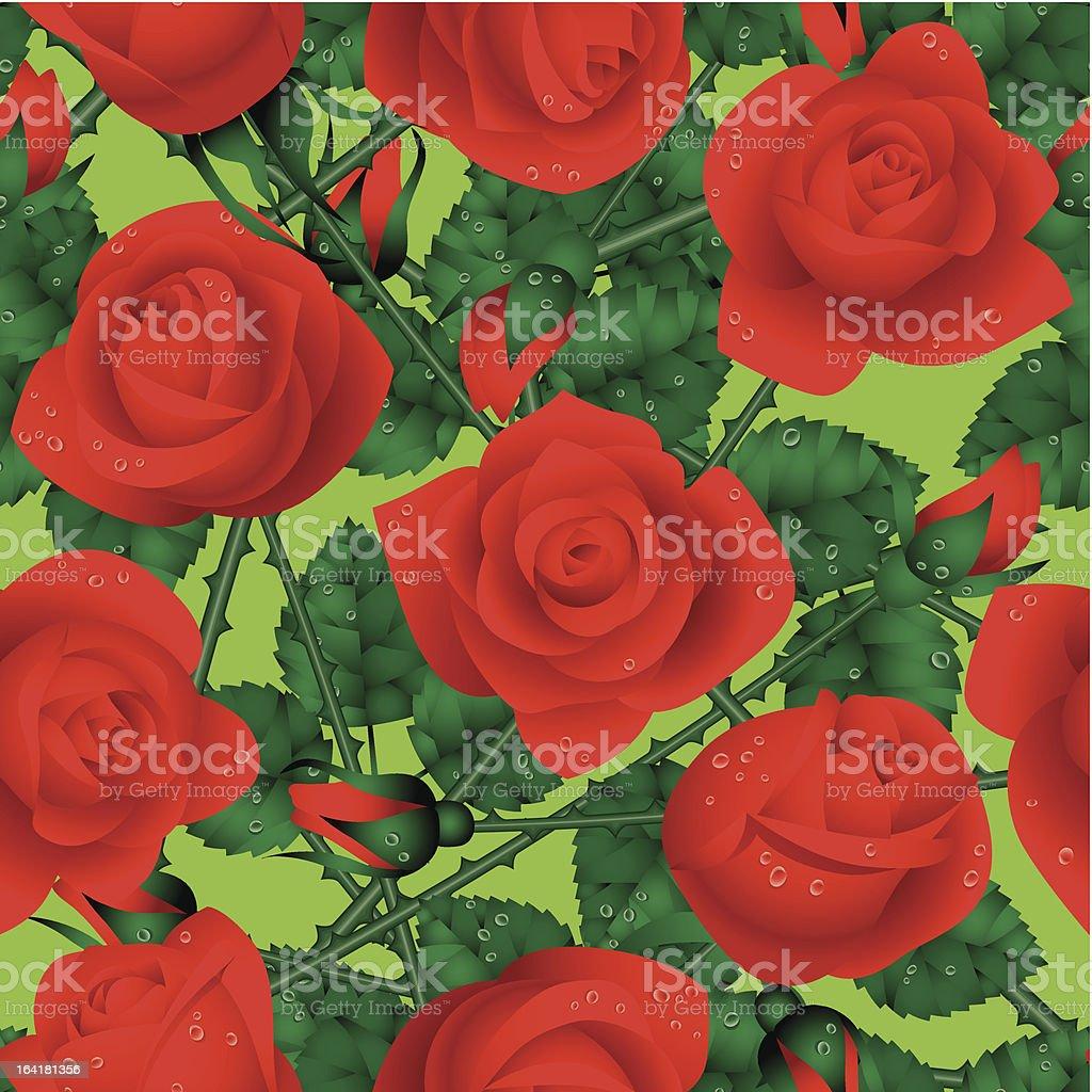 Rose seamless vector art illustration