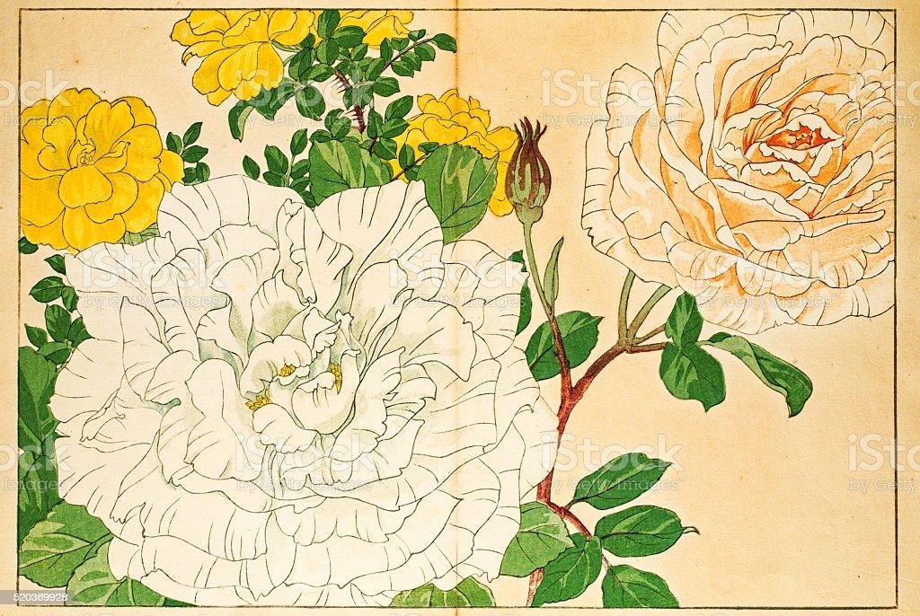 Roses japanese woodblock print vector art illustration
