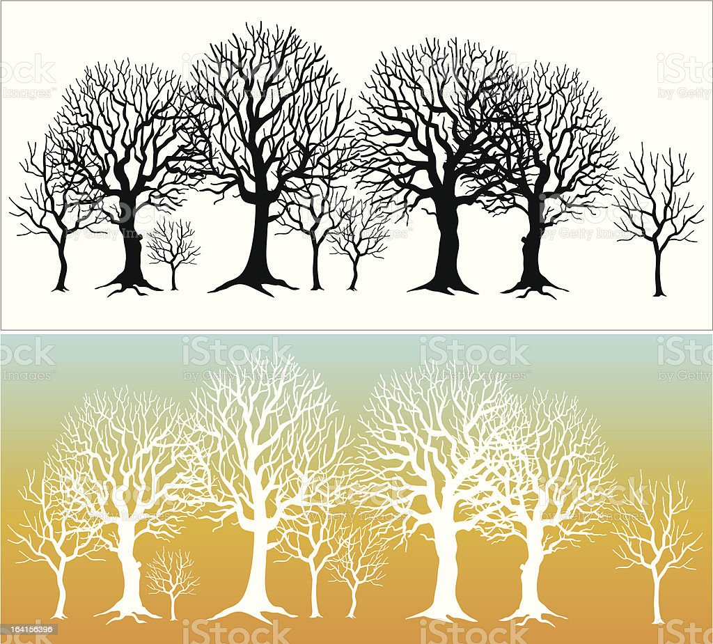 Row of trees vector art illustration