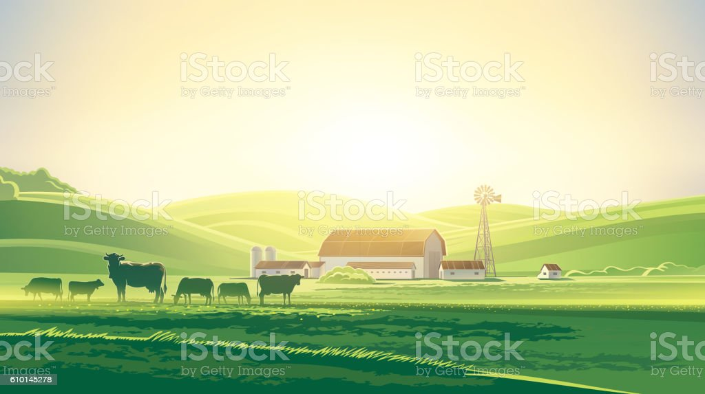 Rural landscape with cows. vector art illustration