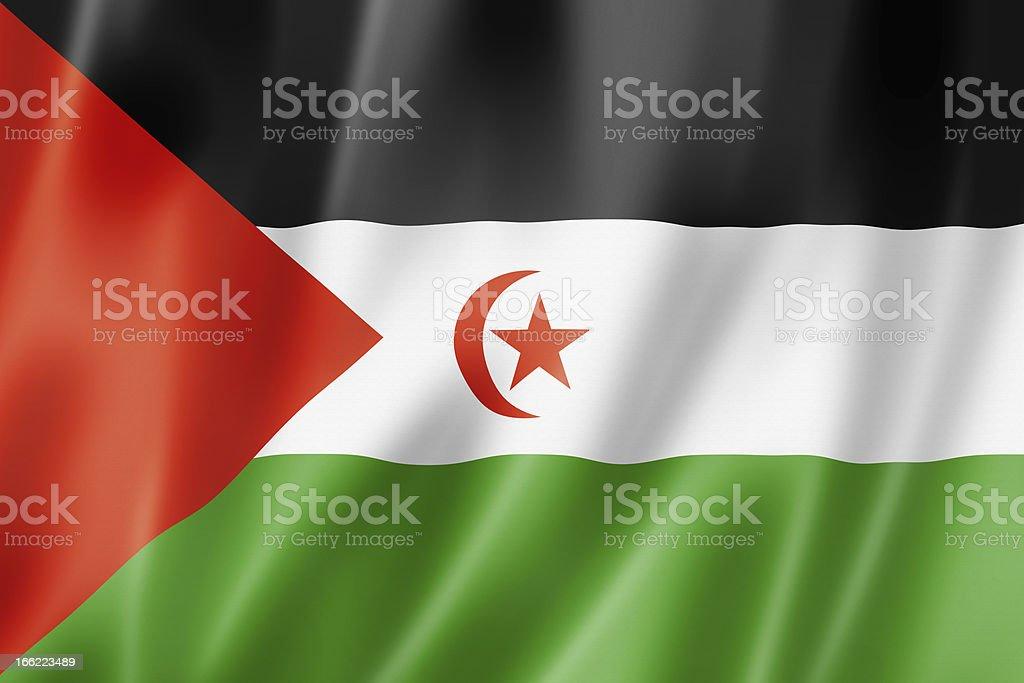 Sahrawi flag vector art illustration