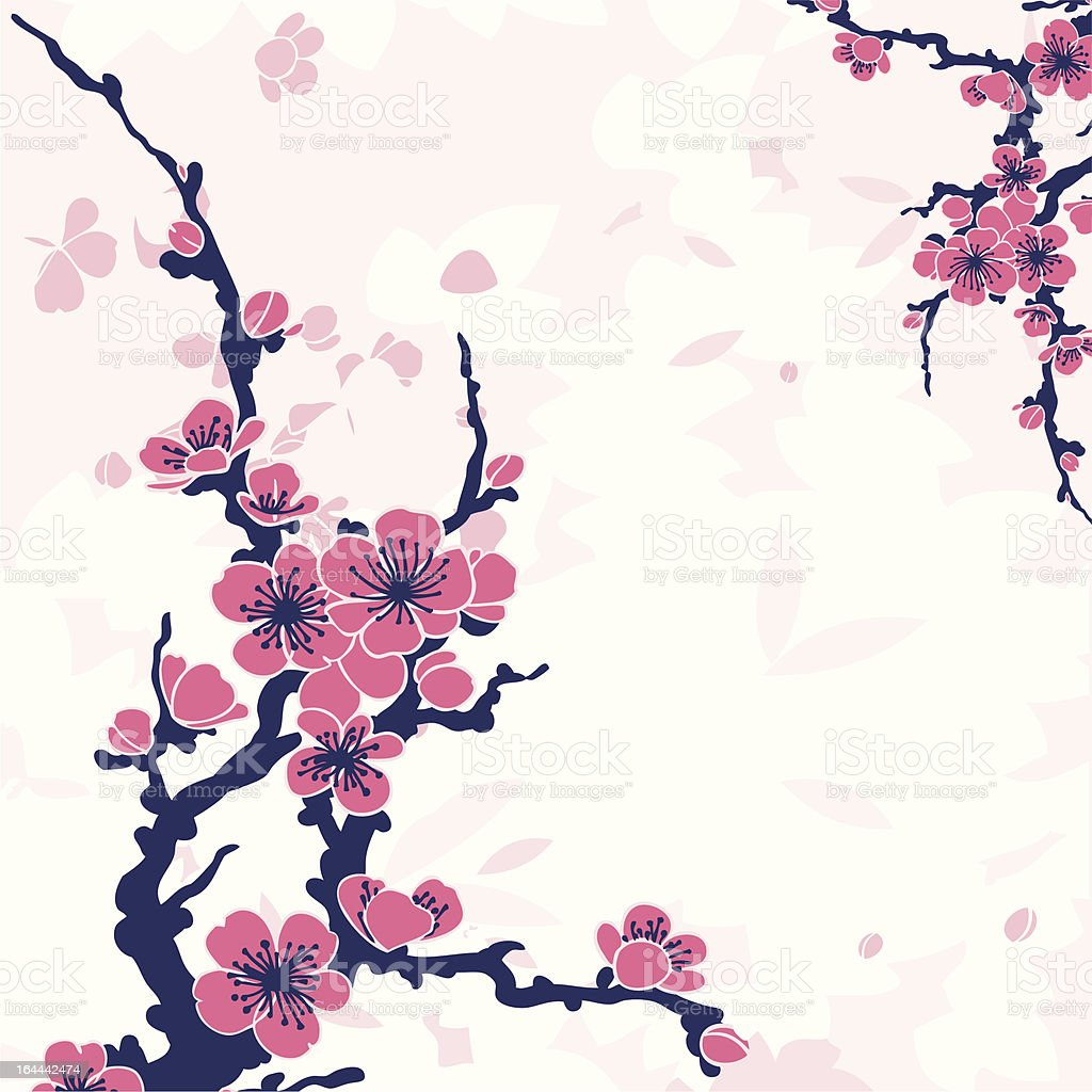 Sakura branch, vector illustration. royalty-free stock vector art