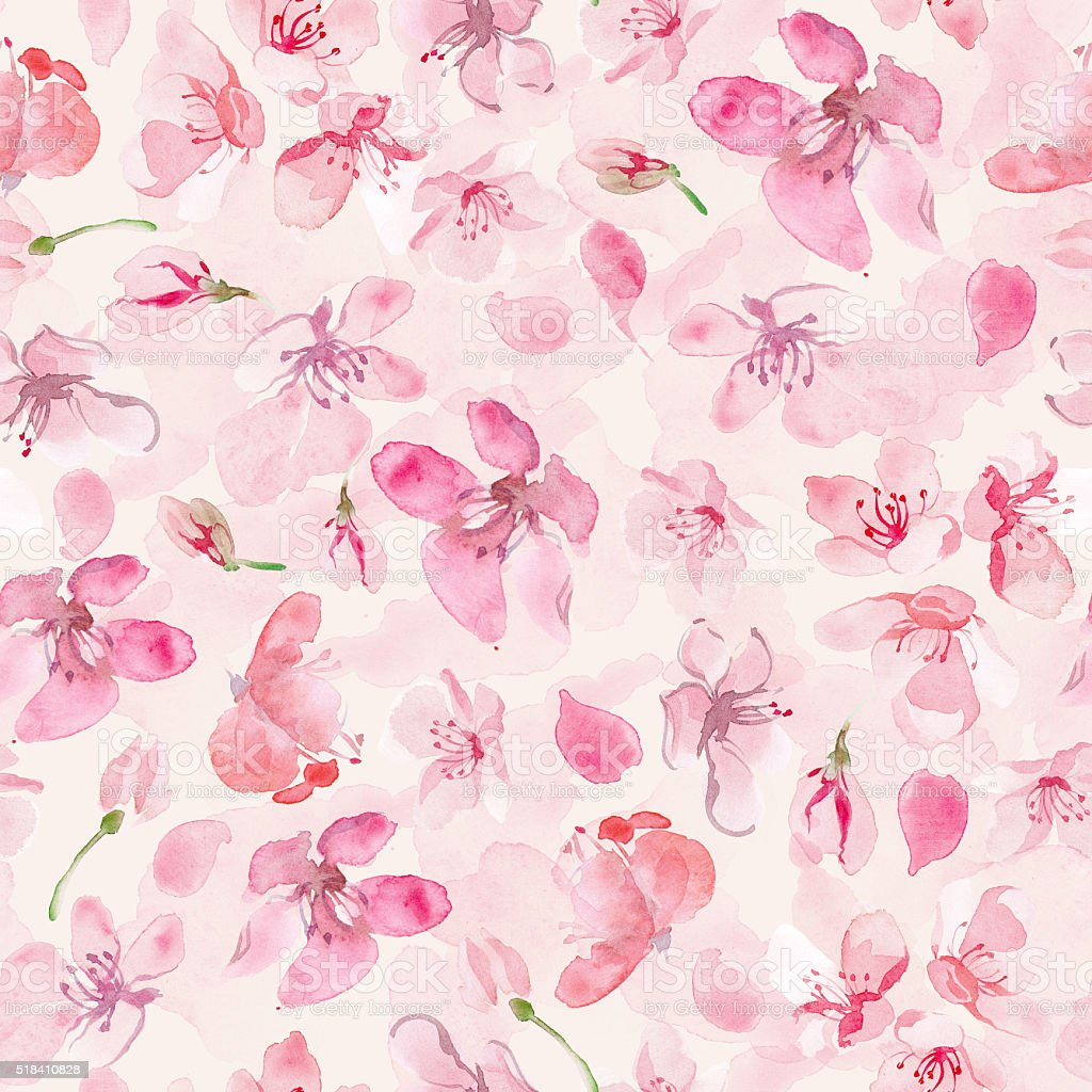 sakura flower background vector art illustration
