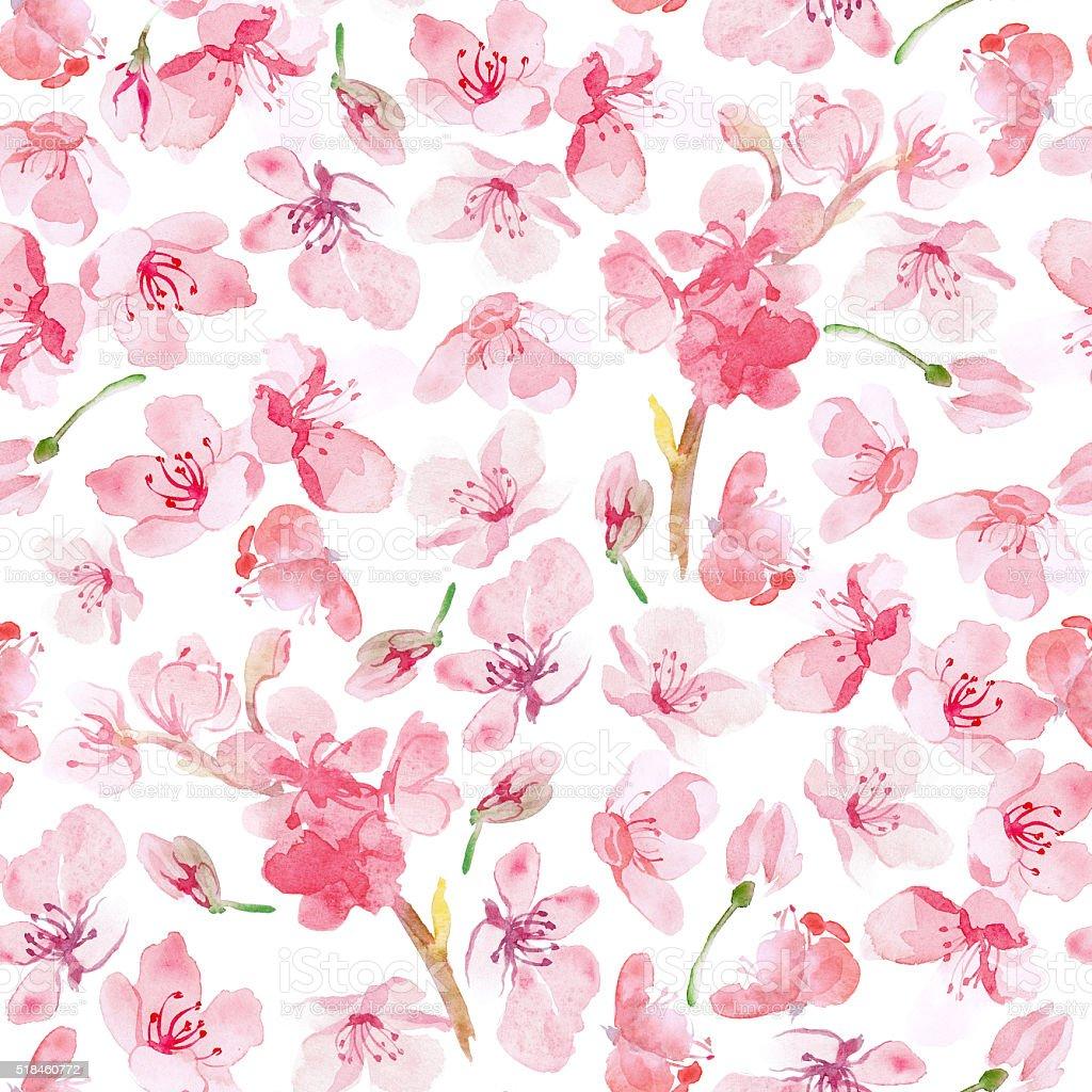 sakura flower pattern vector art illustration