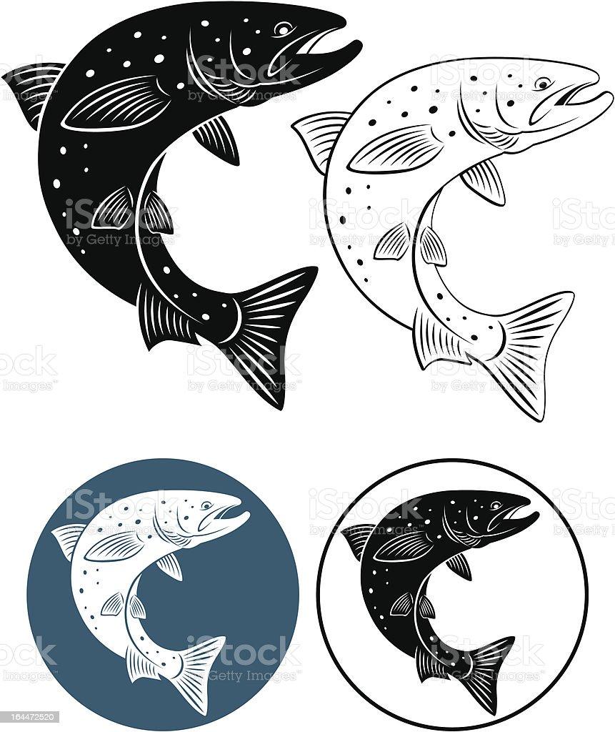 salmon vector art illustration