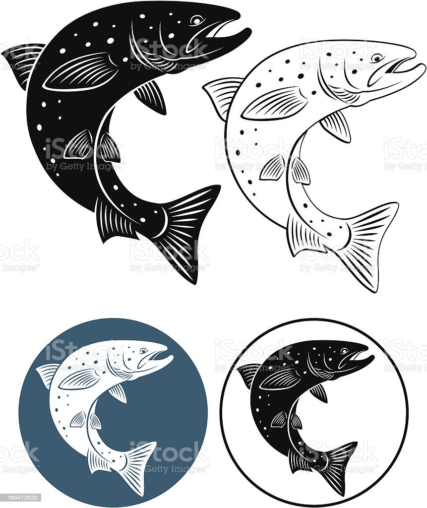 salmon vector art illustration