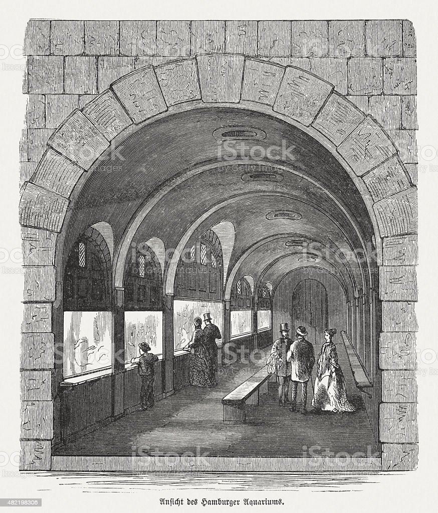 Saltwater Aquarium in Hamburg, published in 1868 vector art illustration