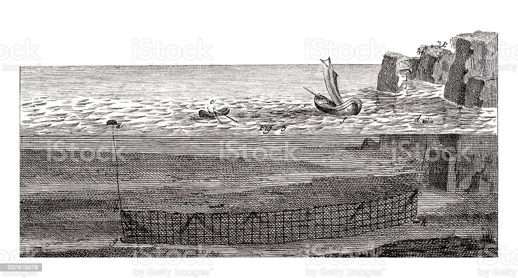 Saltwater fishing Industry on 1771 antique illustration vector art illustration