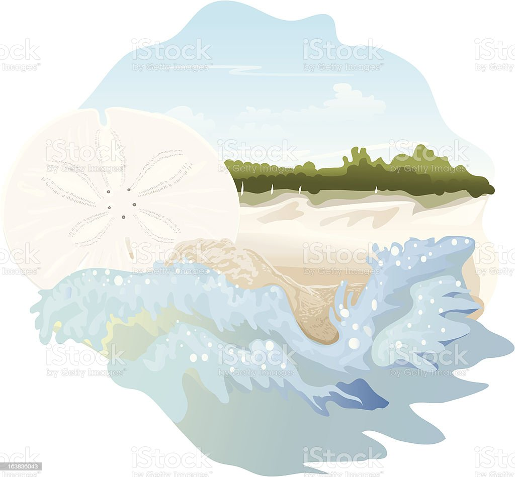 Sand Dollar on the Beach vector art illustration