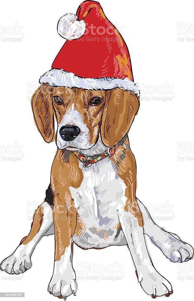 Santa Beagle royalty-free stock vector art