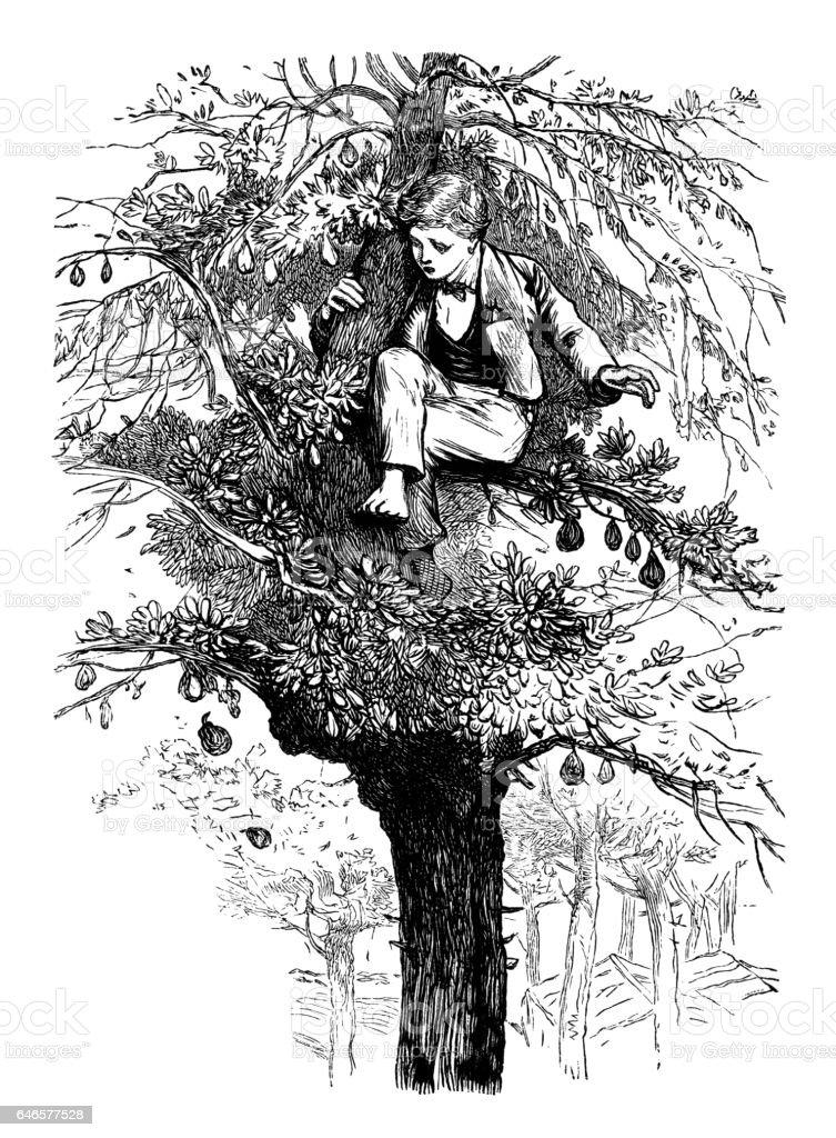 Scared Victorian boy hiding in a pear tree vector art illustration