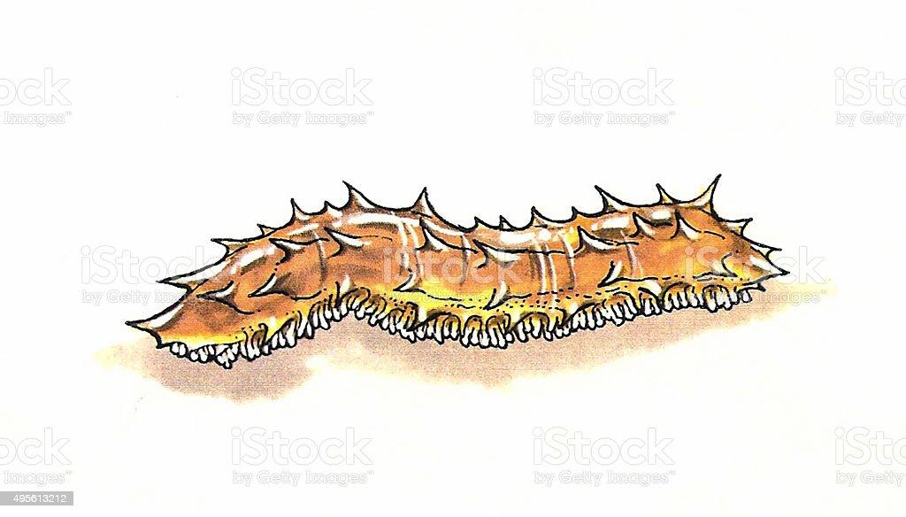 Sea Nacktschnecke Lizenzfreies vektor illustration