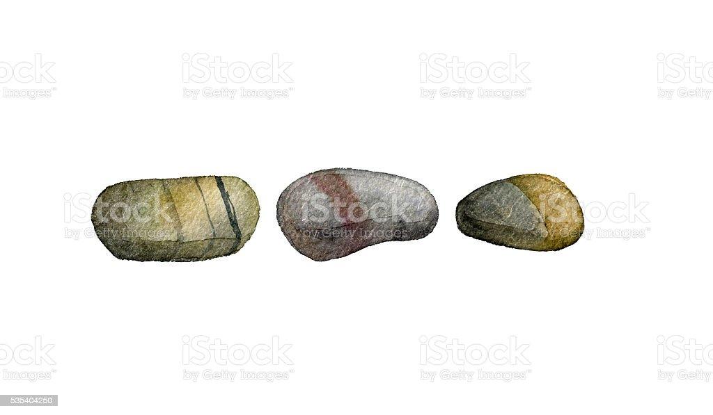 sea stones drawing in watercolor vector art illustration