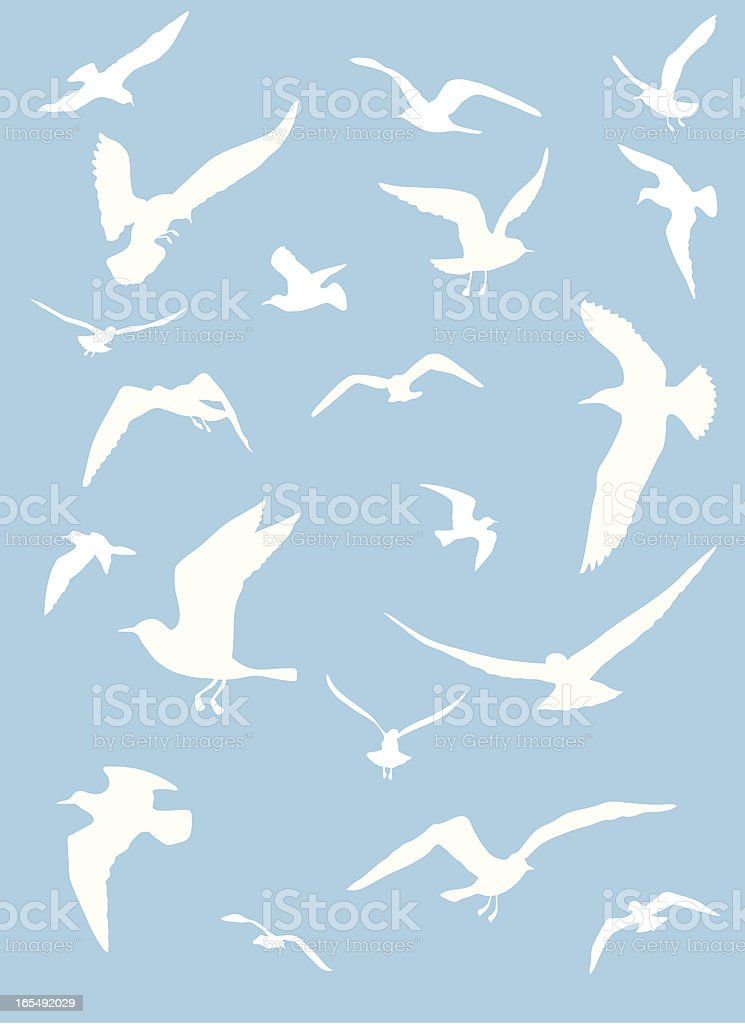 Seagulls royalty-free stock vector art