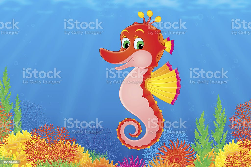 Seahorse vector art illustration