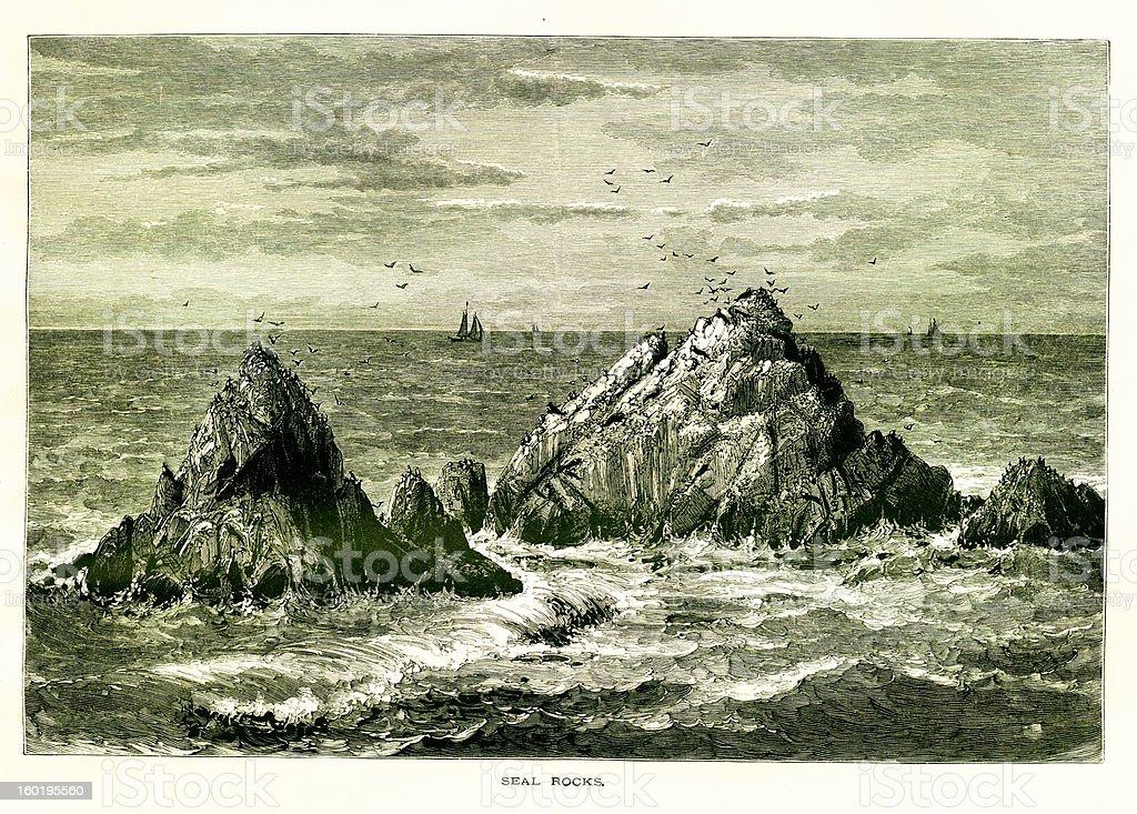 Seal Rocks, San Francisco royalty-free stock vector art