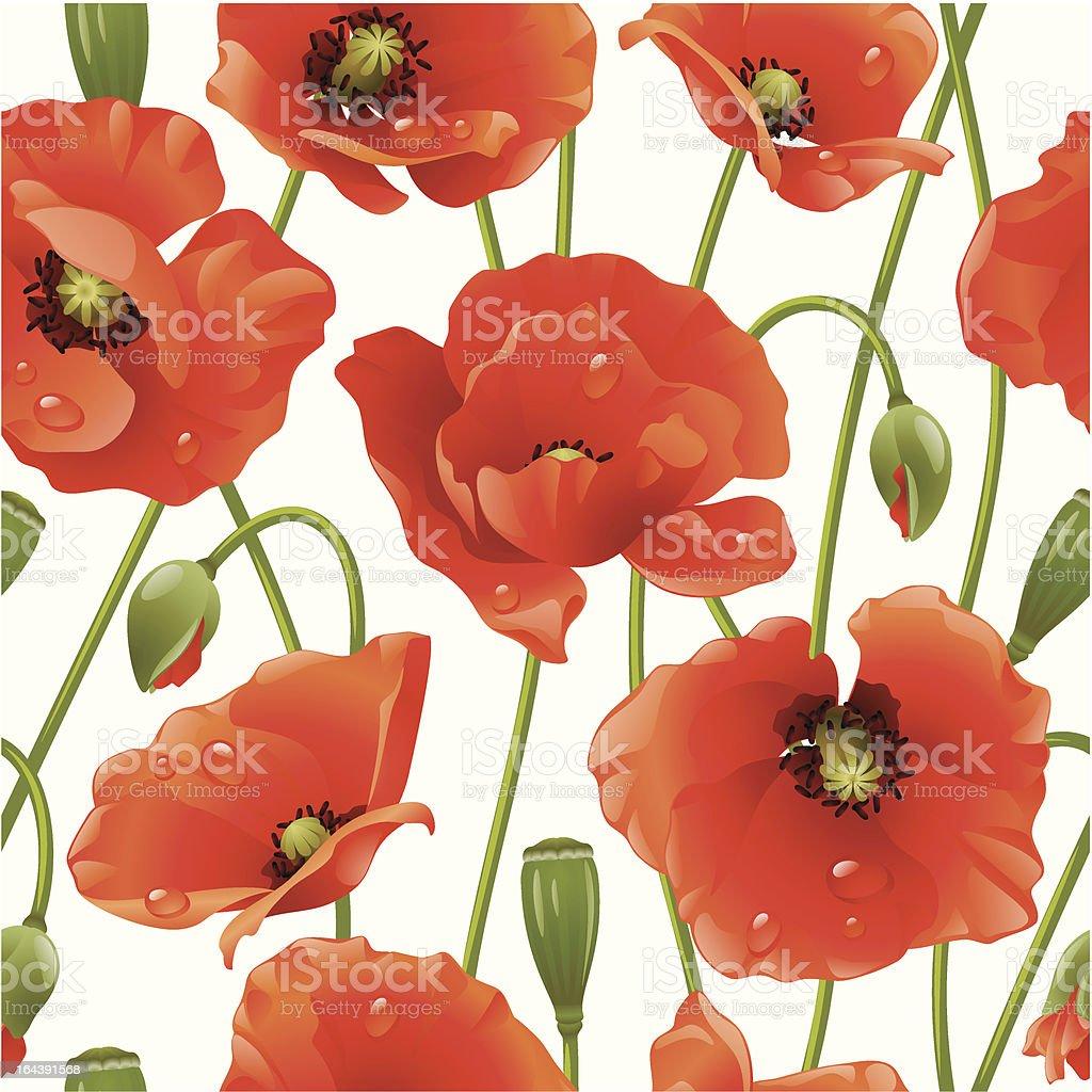 Seamless background: poppy royalty-free stock vector art