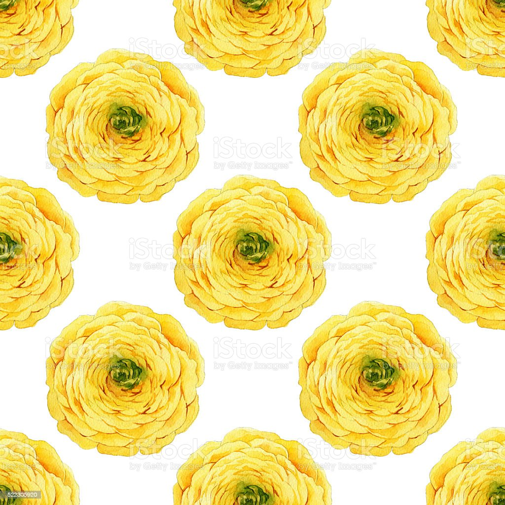 Seamless floral pattern with buttercups vector art illustration