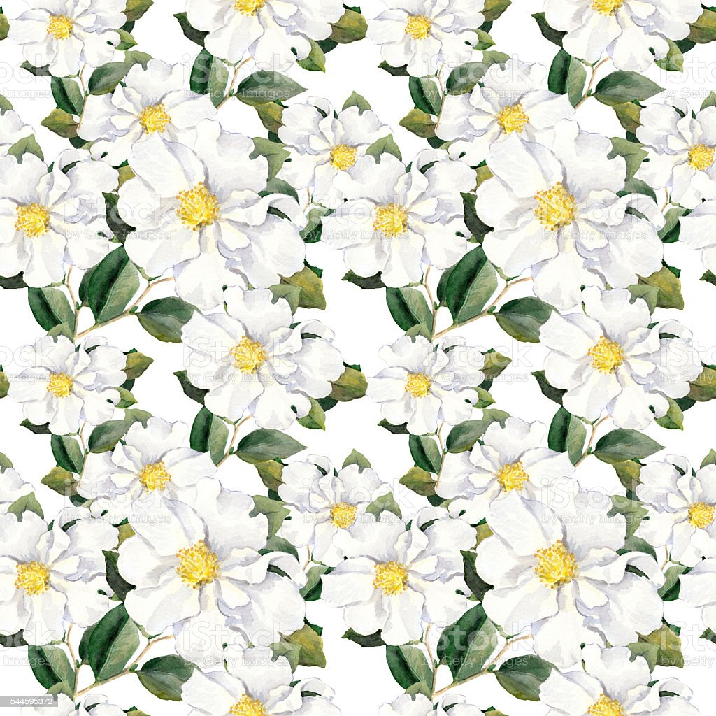 Seamless floral wallpaper with white flowers magnolia, peonies. Watercolour vector art illustration