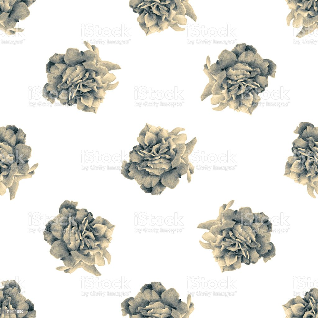 Seamless pattern with beautiful roses vector art illustration