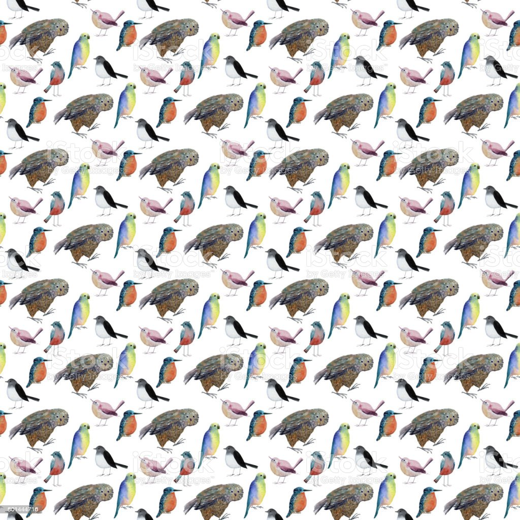Seamless pattern with birds vector art illustration