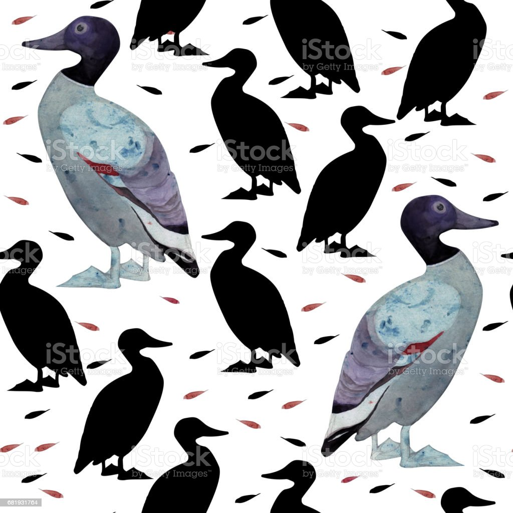 Seamless pattern with hand drawn watercolor duck and black silhouettes of duck and stylized feathers. vector art illustration