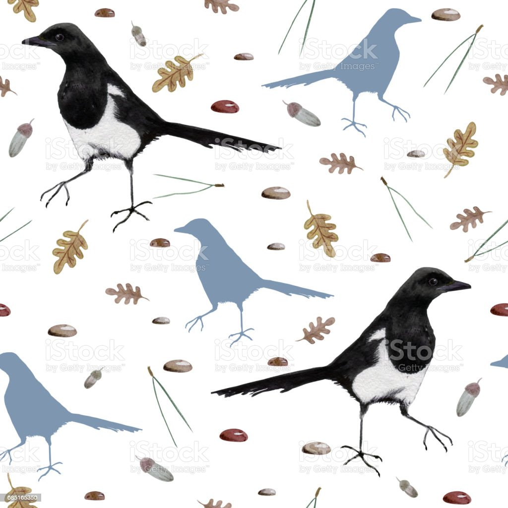 Seamless pattern with hand drawn watercolor Magpie, oak leaves, pine needles, acorns, pebbles. vector art illustration