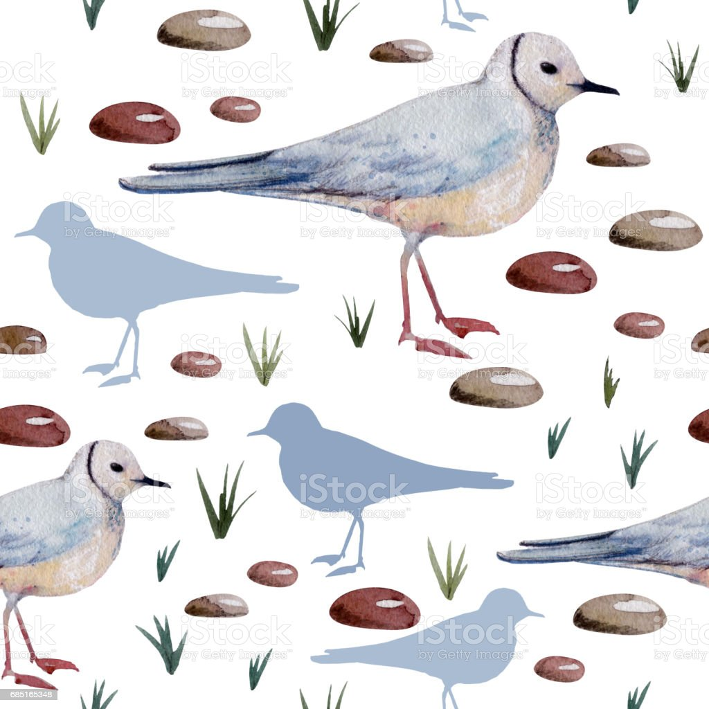 Seamless pattern with hand drawn watercolor Ross's gull, silhouette of a gull, sea stones, grass. vector art illustration