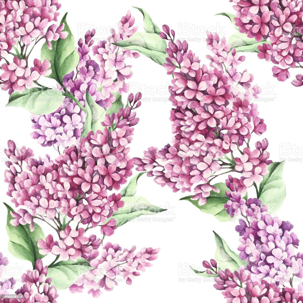 Seamless pattern with lilac flowers. Watercolor illustration vector art illustration