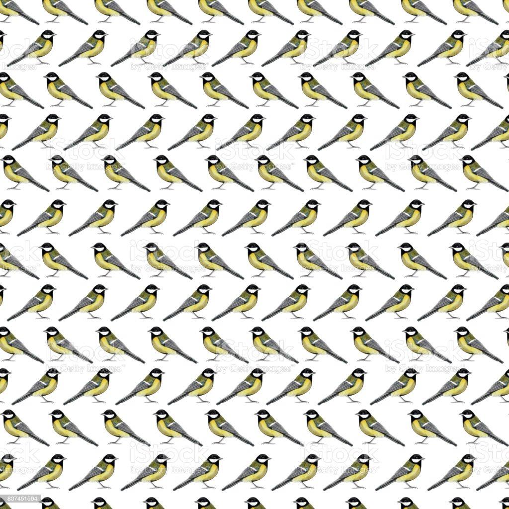 Seamless pattern with titmouse. vector art illustration