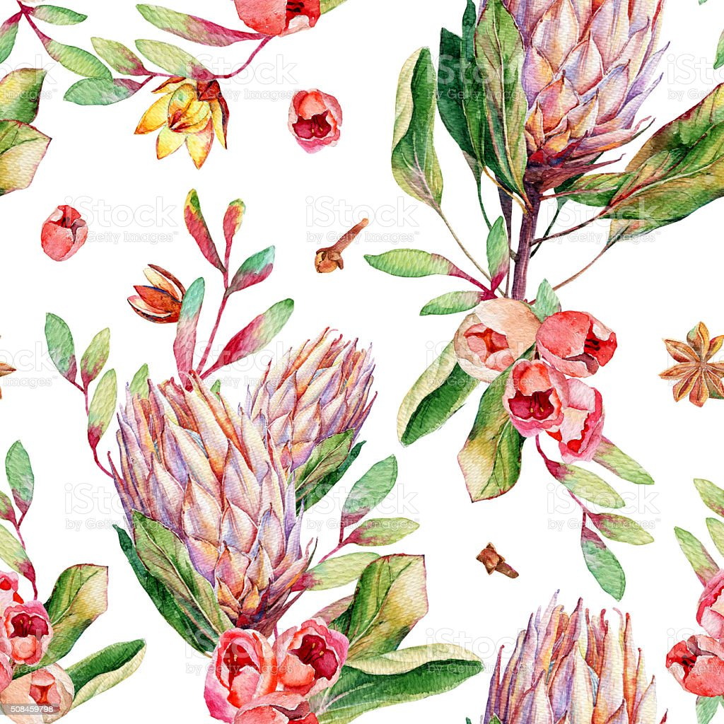 Seamless pattern with watercolor pink protea and roses. stock photo