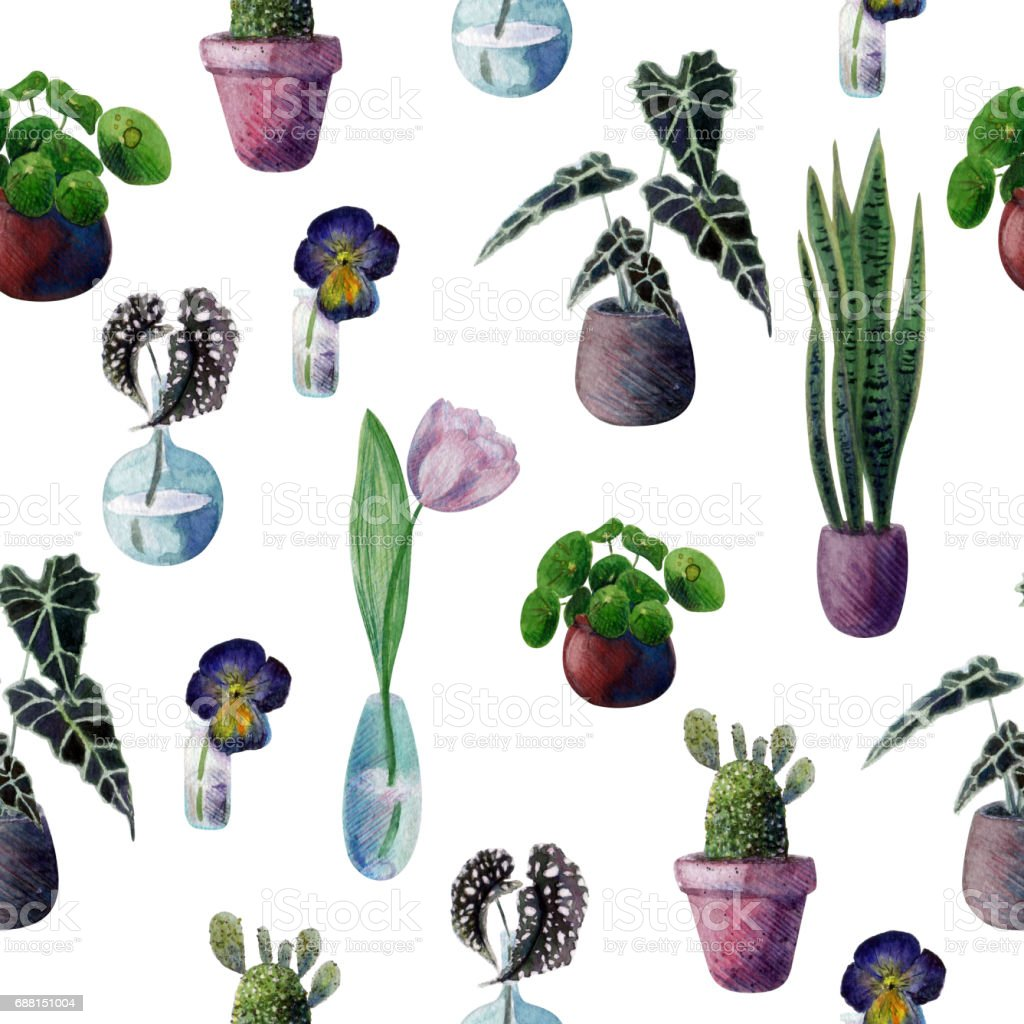 Seamless watercolor pattern with indoor plants. Cactus, Pilea, Begonia, Pansies, Tulip, Sansevieria. vector art illustration