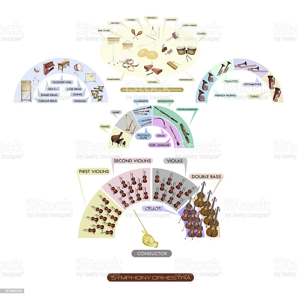 Seating Chart of Musical Instrument for Symphonic Band vector art illustration