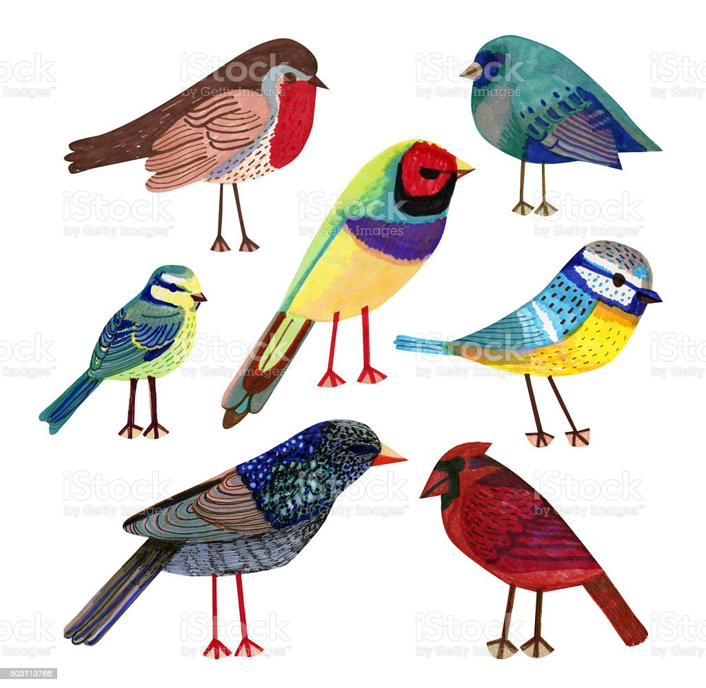 Selection of hand drawn birds stock photo
