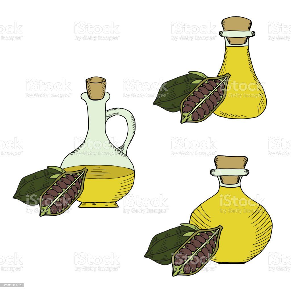 Sesame oil bottle, nuts, set in color 1 vector art illustration